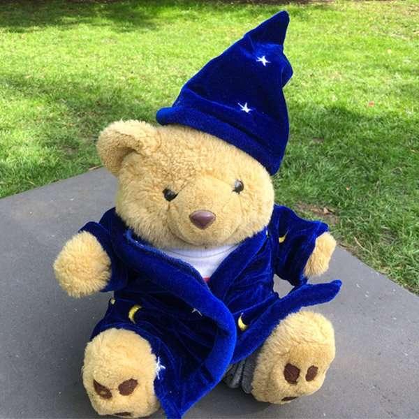 Eddie Teddie as a Detective Wizard