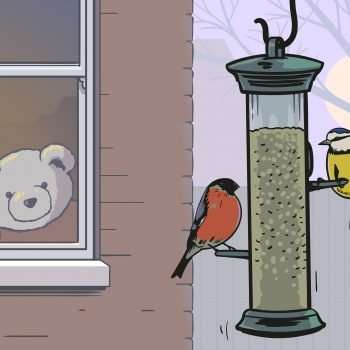 Eddie Teddie feeds the birds